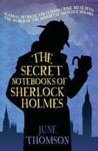 The Secret Notebooks of Sherlock Holmes ebook by June Thomson