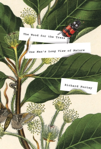 The Wood for the Trees - One Man's Long View of Nature ebook by Richard Fortey
