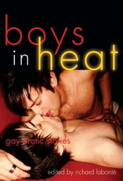 Boys In Heat - Gay Erotic Stories ebook by Richard  Labonte
