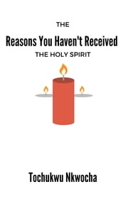 The Reasons You Haven't Received the Holy Spirit ebook by Tochukwu Nkwocha