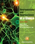 Neuroanatomy and Neuroscience at a Glance ebook by Roger A. Barker, Francesca Cicchetti