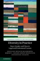 Diversity in Practice - Race, Gender, and Class in Legal and Professional Careers ebook by Spencer Headworth, Robert L. Nelson, Ronit Dinovitzer,...
