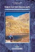 Through the Italian Alps - The GTA - The Grande Traversata delle Alpi ebook by Gillian Price