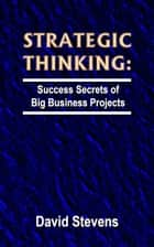 Strategic Thinking: success secrets of big business projects ebook by David Stevens