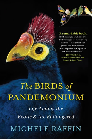 The Birds of Pandemonium ebook by Michele Raffin