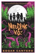 Meddling Kids - A Novel ebook by Edgar Cantero