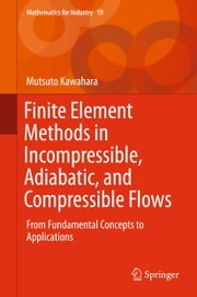 Finite Element Methods in Incompressible, Adiabatic, and Compressible Flows - From Fundamental Concepts to Applications ebook by Mutsuto Kawahara