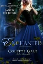 Enchanted - A New Love ebook by Colette Gale