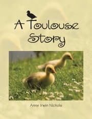 A Toulouse Story ebook by Anne Irwin Nichols