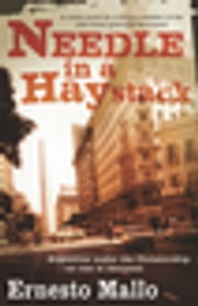 Needle in a Haystack ebook by Ernesto Mallo, Jethro Soutar