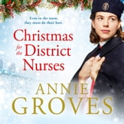 Christmas for the District Nurses (The District Nurse, Book 3) audiobook by Annie Groves
