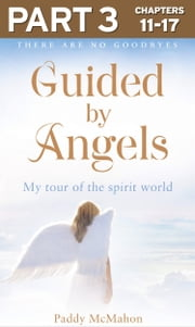 Guided By Angels: Part 3 of 3: There Are No Goodbyes, My Tour of the Spirit World ebook by Paddy McMahon