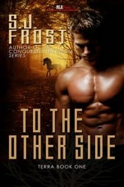 To The Other Side ebook by S.J. Frost