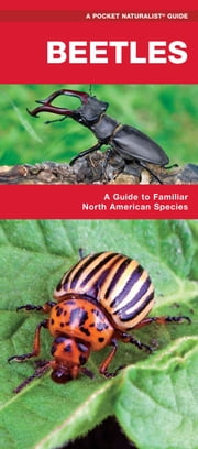 Beetles - A Folding Pocket Guide to Familiar North American Species ebook by James Kavanagh,Raymond Leung