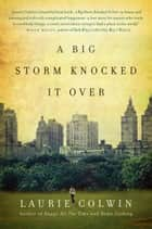 A Big Storm Knocked It Over - A Novel ebook by Laurie Colwin