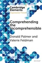 Comprehending the Incomprehensible - Organization Theory and Child Sexual Abuse in Organizations ebook by Donald Palmer, Valerie Feldman