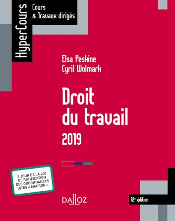 Droit du travail 2019 eBook by Cyril Wolmark,Elsa Peskine