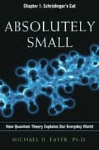 Absolutely Small, Chapter 1 ebook by Michael D. FAYER
