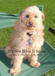 It's Not What It Seems ebook by Ray Doyle