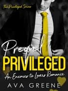 Privileged (Prequel): An Enemies to Lovers Romance - The Privileged Series ebook by Ava Greene