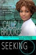 Seeking - PAVAD: FBI Romantic Suspense, #15 ebook by Calle J. Brookes
