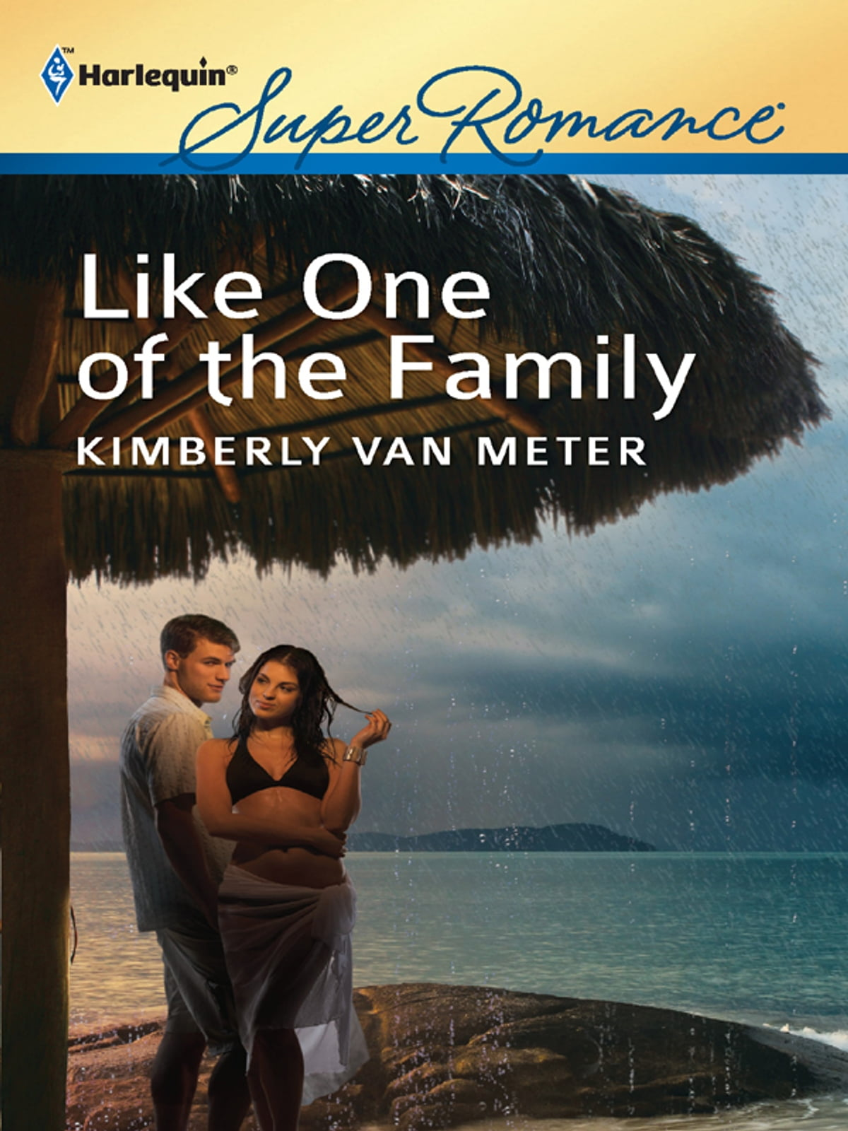 a chance in the night meter kimberly van