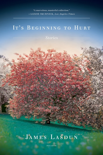 It's Beginning to Hurt - Stories ebook by James Lasdun