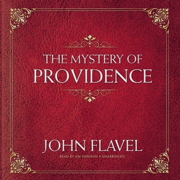 The Mystery of Providence audiobook by John Flavel