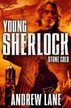 Stone Cold ebook by Andrew Lane