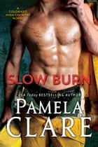 Slow Burn ekitaplar by Pamela Clare
