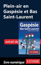 Plein-air en Gaspésie et Bas Saint-Laurent ebook by Collectif Ulysse