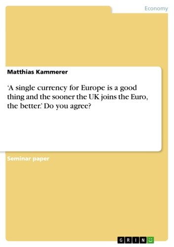 'A single currency for Europe is a good thing and the sooner the UK joins the Euro, the better.' Do you agree? ebook by Matthias Kammerer