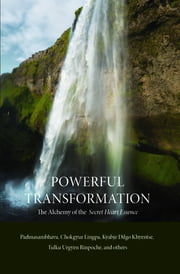 Powerful Transformation - The Alchemy of The Secret Heart Essence ebook by Chokgyur Dechen Lingpa