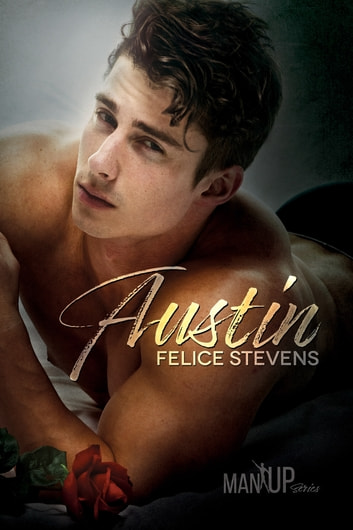 Austin ebook by Felice Stevens