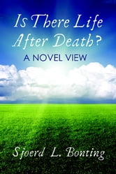 Is There Life After Death? A Novel View ebook by Sjoerd L. Bonting