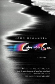 Color of the Sea - A Novel ebook by John Hamamura