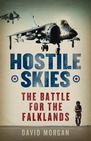 Hostile Skies ebook by David Morgan