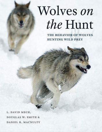 Wolves on the Hunt - The Behavior of Wolves Hunting Wild Prey ebook by L. David Mech,Douglas W. Smith,Daniel R. MacNulty