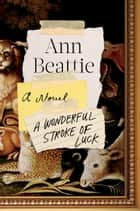 A Wonderful Stroke of Luck - A Novel eBook by Ann Beattie