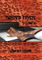 Twisted Trysts Volume Three ebook by Saja Bo Storm