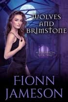 Wolves and Brimstone - Blood Martyr, #3 ebook by Fionn Jameson