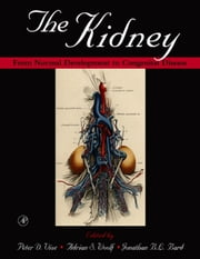 The Kidney - From Normal Development to Congenital Disease ebook by Adrian S. Woolf, Peter D. Vize, Jonathan B.L. Bard