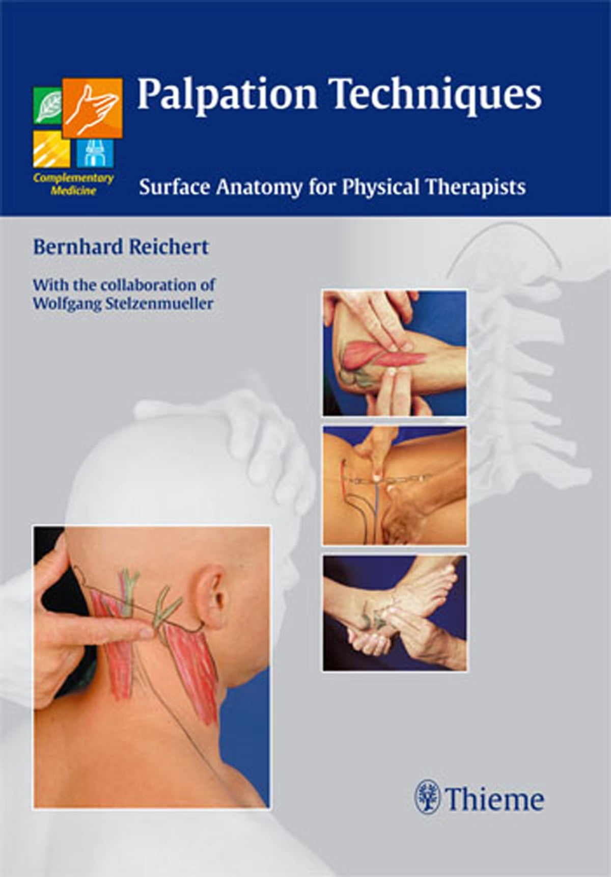 Palpation Techniques eBook by Bernhard Reichert - 9783131468512 ...