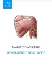 Anatomy flashcards: Shoulder and arm - Learn all bones, ligaments and muscles on the go ebook by Kenhub, Kenhub
