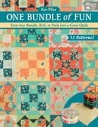 One Bundle of Fun - Turn Any Bundle, Roll, or Pack into a Great Quilt ebook by Sue Pfau