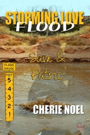 Sam & Patric ebook by Cherie Noel