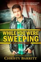 While You Were Sweeping ebook by Christy Barritt
