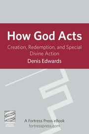 How God Acts - Creation, Redemption, And Special Divine Action ebook by Denis Edwards