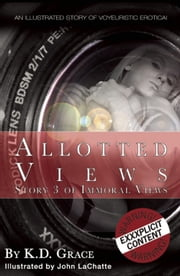Allotted Views - An illustrated story of voyeuristic erotica ebook by K. D. Grace,John LaChatte