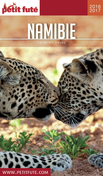 NAMIBIE 2016/2017 Petit Futé ebook by Dominique Auzias,Jean-Paul Labourdette